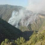 Incendi: in Calabria 33 attivi, grave situazione nel Cosentino
