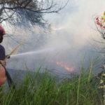 Incendi: decine di roghi nel Cosentino, molte squadre in azione