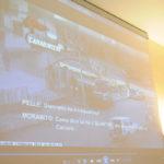 'Ndrangheta: operazione Mandamento, i nuovi gradi degli affiliati