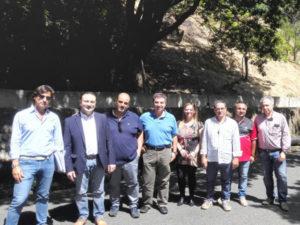 Provincia Catanzaro: consegnati lavori ricostruzione provinciale 84