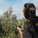 Incendi: vigili fuoco, oggi oltre 600 interventi; 70 in Calabria
