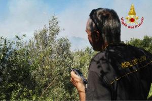 Vigili fuoco: oltre 439 mila interventi in sette mesi (+12%)
