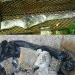 Armi e droga rinvenute dai Carabinieri a Filandari