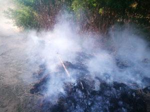Incendi: bruciava rifiuti vegetali, una denuncia nel Cosentino