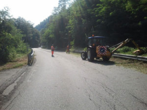 Viabilita': Provincia Catanzaro  decespuglia le strade provinciali