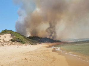 Incendi: rogo in pineta Isola Capo Rizzuto, fiamme vicino camping