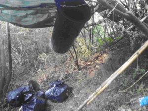 Droga: rinvenuti a Placanica dai Cc 6,5 Kg di canapa indiana