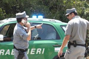Incendi: appicca fuoco in un bosco a Reggio Calabria, arrestato