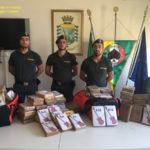 Droga: sequestrati 218 kg di cocaina in 2 container a Gioia Tauro