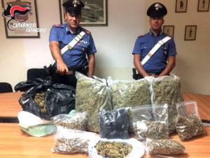 Droga: marijuana in casa, giovane arrestato nel Catanzarese