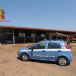 'Ndrangheta: clan Crea, confiscati beni per un milione