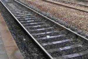 Treno investe pecore nel Catanzarese su linea Fs ionica