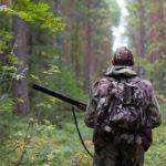 Regione: emergenza cinghiali, al via corso formazione cacciatori