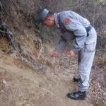 Caccia: trappole vietate per catturare cinghiali, denunciati