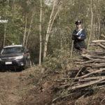 Tagliano alberi in zona a vincolo paesaggistico, arresti a Magisano