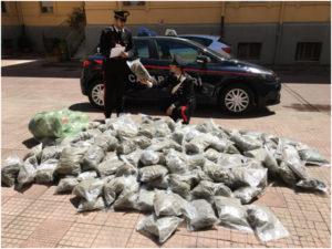 Droga:avrebbero nascosto hashish e marijuana, coniugi arrestati