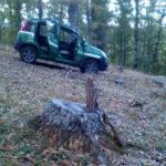 Sorpreso a rubare 4 quintali di legname, arrestato a Fagnano C.