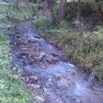 Lamezia: Polizia Locale denuncia 54enne per reati ambientali