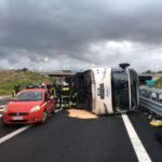 Incidenti stradali:Villa S.Giovanni,pullman si ribalta, 15 feriti
