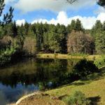 Turismo: il parco della Sila alla fiera internazionale di Madrid