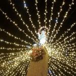 Lamezia: Festa Immacolata, omaggio floreale Chiesa e città