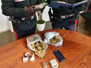 Droga: mezzo chilo di marijuana in casa, un arresto a Rende