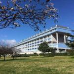 Lamezia: Coordinamento Sanità 19 marzo si a fusione Ospedale