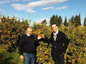 Agrumi: clementine di Corigliano a Sanremo per il festival