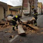 Maltempo: Catanzaro; disagi per la viabilità in Via A. Turco