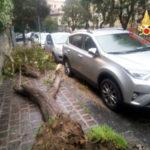 Maltempo: venti forti e pioggia, danni a Catanzaro