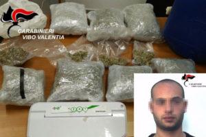 Droga: marijuana nella stalla, giovane arrestato nel Vibonese