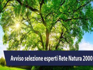 """Regione: pubblicato avviso per 10 esperti """"Rete natura 2000"""""""
