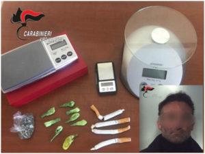 Droga: cocaina e marijuana nel cibo per cani, un arresto a Tropea
