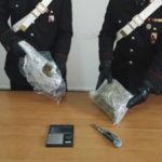 Droga: 800 grammi di marijuana nel giardino arrestato dai Cc