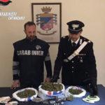Droga: padre e figlio arrestati dai carabinieri a Jacurso