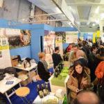 """Olivicoltura: la Regione a Trieste per """"Olio Capitale"""