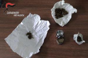 Droga: marijuana nel cortile dell'istituto nautico di Pizzo