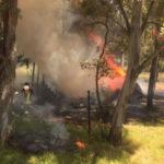 Sellia Marina: incendio in Pineta distrutta una Roulotte