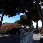 Lamezia: potati rami scuola Alberto Manzi e infanzia Antonio Ferraro