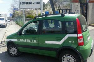 Sicurezza alimentare: prodotto sequestrati a San Giovanni in Fiore
