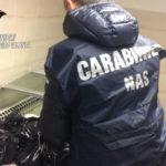 Sicurezza alimentare: sequestrati 30 quintali formaggi nel Crotonese