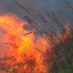 Incendi: brucia bosco e macchia mediterranea nel Catanzarese