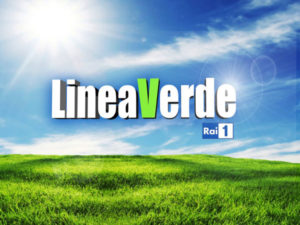 "Rai1: ""Linea Verde... va in citta'"", Reggio Calabria"