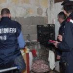 Muore quarto neonato a Brescia, Nas in ospedale