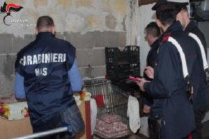 Sicurezza: controlli alimentari dei Nas e dei Carabinieri