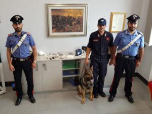 Droga e armi in casa, incastrato dal cane dei carabinieri