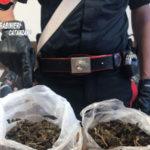 Droga: marijuana e hashish nel bagno, un arresto a Guardavalle