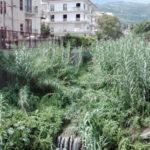 Lamezia: La Scala, iniziata ripulitura del Cantagalli e altri fiumi