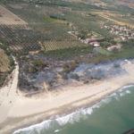 Incendi: rogo nel Catanzarese distrugge 10 ettari di uliveto e pineta