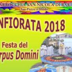 Infiorata a San Pietro a Maida nel giorno del Corpus Domini